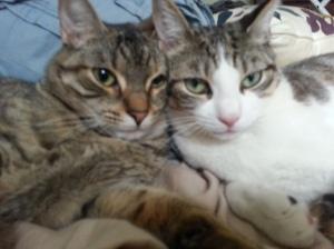 una y mimi